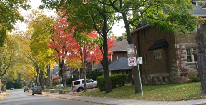 beautiful tree lined residential street in Toronto