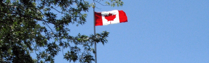 Canadian Flag through the Trees