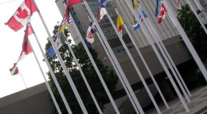 flags flying at Toronto City Hall