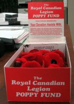Royal Canadian Legion poppy drive collection box in a Conservative MP's office