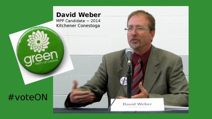 David Weber, Green Party