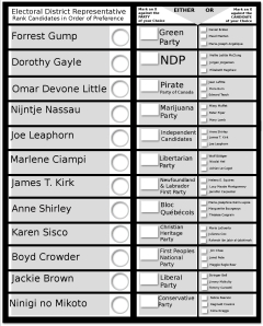 STV Indie SAMPLE BALLOT
