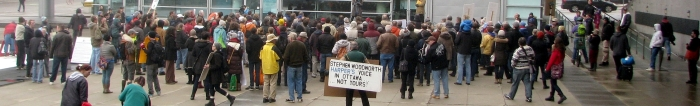 Kitchener-Waterloo Day of Action against Bill C-51, March 14, 2015